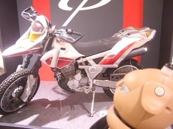 CIMG6255.JPG